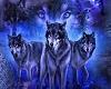 F/ Dark Blue Wolf Ring