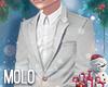 🎄 Holiday Suit n/Tie