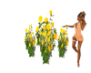 Yellow Rose Bushes