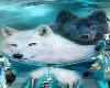 pasion de lobos