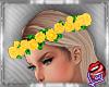 [LD]Aretha FlowerscY