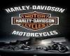 Harley Sun Glasses