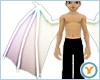 Fld Dragon Wings: Irides