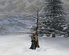 Winter Tree Kiss