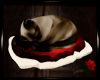 Siamese Sleepin Cat CRDC