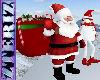 Santa w Bag Pet
