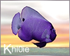 K purple fish anim