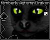 KA Black Cat