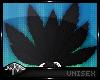 `| Neko Tails - Black