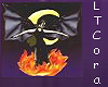 LTCora_banner
