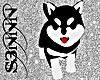 S3N - Cute Dog