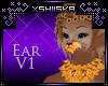 .xS. Winnie|Ear V1
