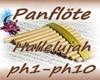 Panflöte Hallelujah