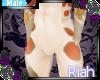 Amara shorts