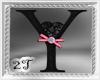 ~2T~ Y  Black Pink Rose