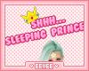 Sleeping Princess Sign