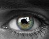 Hero | Eyes