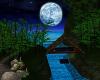 Blue Moon Waterfall Room