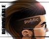 public hawk.mesh