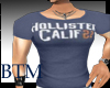 [BTM] Hollister Muscle T