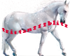 Magical white horse