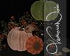 VN Ruins Pumpkins 3