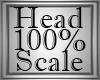 `BB` 100% M Head Dev