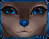 🐺 HD Nose | Indigo
