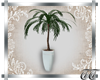 The Cottage Potted Plant