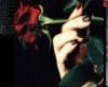 {ss60}rose