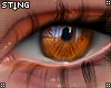 S' Harvest Pumpkin Eyes
