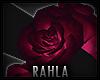 TAZZA Rose Bracelet