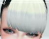 Allegra B& Gray Bang