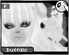~Dc) The White Buffalo B