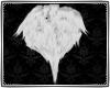 Angel's Chest Tuff