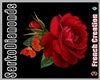Red Rose ~Anim