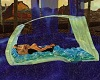 TF* Perfect Waterbed
