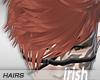 -Hairs-Iri Sellow Brown2