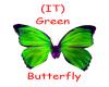 (IT) Green butterfly