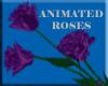 !F! Animated PurpleRoses