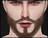 Beard Brown X MH