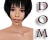 DOM-OCHA HEAD