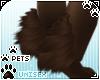 [Pets] Kimi | leg tuft