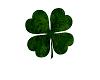 Green Shag Shamrock rug