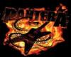 Pantera T Shirt/Dime bk