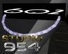 S954 Club 602