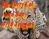 Big Cat Voice Box