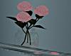 L* Pink Roses