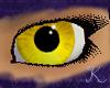 Yellow Topaz Eyes F