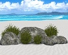 ~CR~Beach Rocks&Grass
